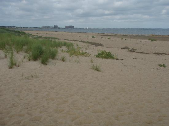 First Landing State Park: Beach front at campground