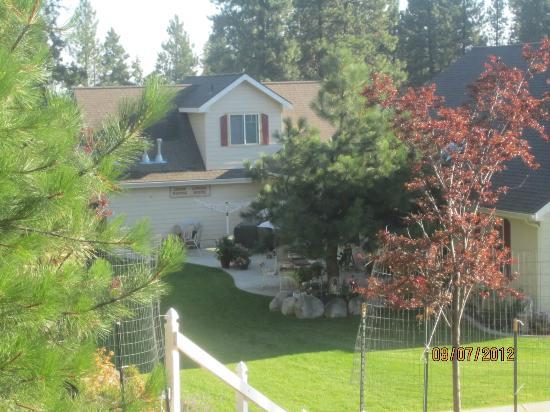 Aspen Meadows Bed & Breakfast: View from the Treehouse of the back grounds