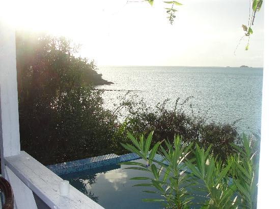 Cocobay Resort : Our plunge pool