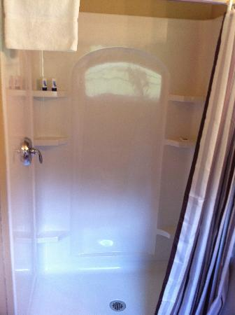 Briarcliff Motel: Shower in bathroom of room 17