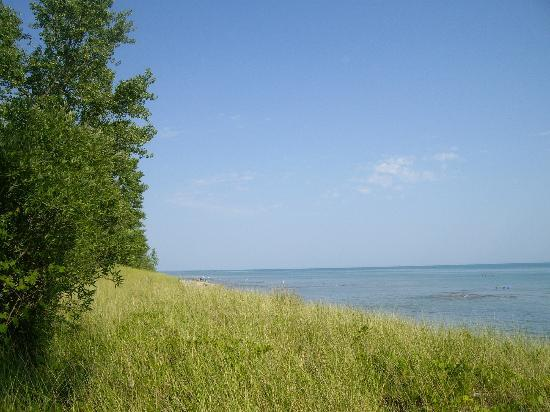 Long Point Provincial Campground: Turtle Dune