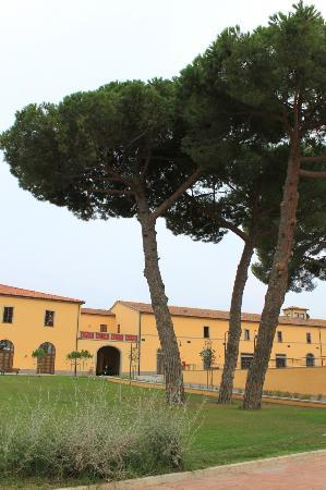 Poggio all'Agnello Country & Beach Residential Resort: Beautiful grounds area.