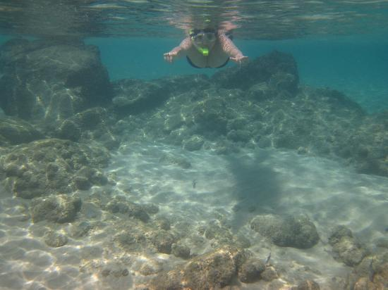 Baia do Sancho: snorkelling