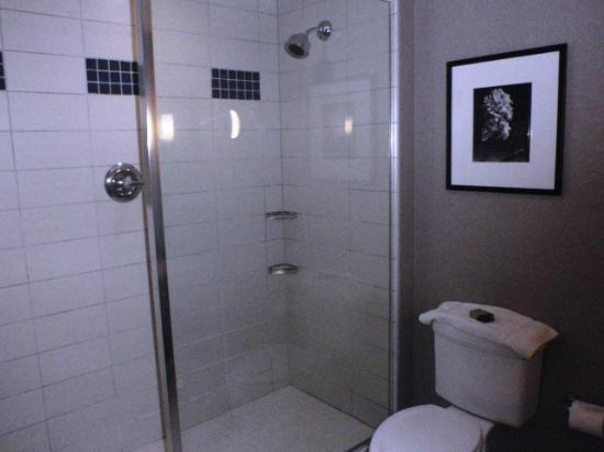 Cambria hotel & suites Noblesville - Indianapolis: Bathroom with walk-in shower