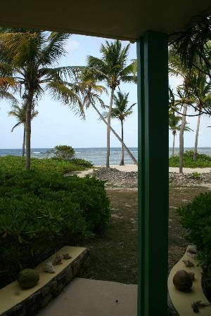 The Palms at Pelican Cove: This was our view from Room 25