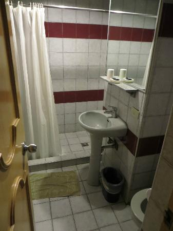 Nichols Airport Hotel: The bathroom was adequate and clean