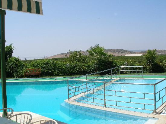 Hitit Hotel: Pool with orchard in background