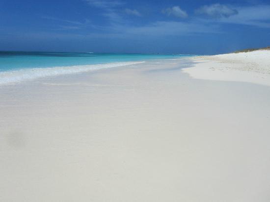 Cayo Crasqui - Los Roques: Caminatas por arenas blancas...