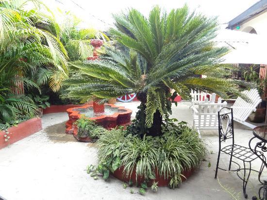 Posada Los Bucaros: Courtyard 