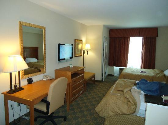 Comfort Suites Valdosta : Queen room