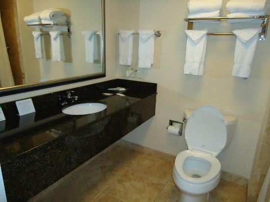 Comfort Suites Valdosta: Bathroom