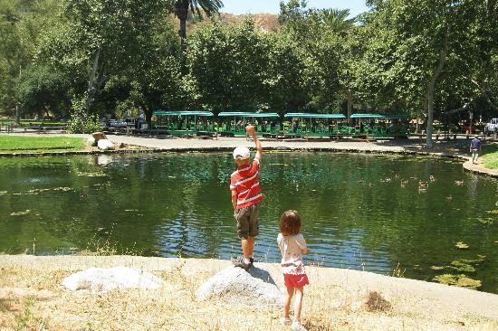 Irvine Regional Park: Kids love the train
