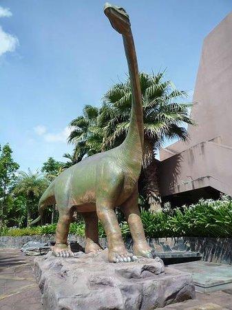 Sirindhorn Museum and Phu Kum Khao Dinosaur Excavation Site: シリントンミュージアム