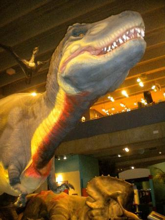 Saint Louis Science Center: Life-Sized animatronic t-rex
