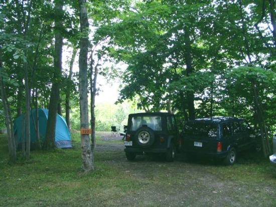 Tobermory Village Campground: campsites overlooking pond