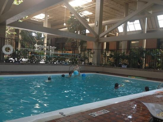 The Academy Hotel Colorado Springs: Indoor pool at The Academy