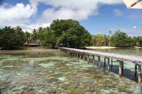 Tavanipupu Private Island Resort: The dock and reefs in front of Tavanipupu resort
