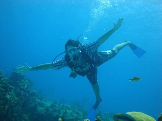 Sharky Dive Shop: como pez en el agua