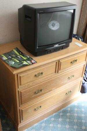 Terrace Hotel: Old TV