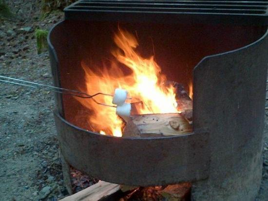 Enclosed fire pits - Picture of Little Qualicum Falls ...