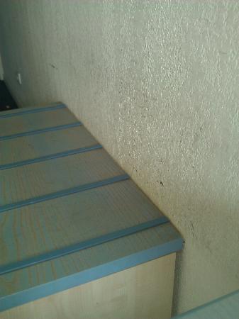 Hotel Agora: Mur