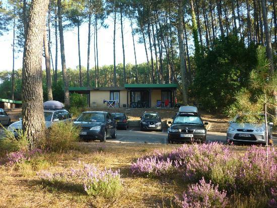 Residence-Club Odalys Les Villages sous les Pins: vue bugalow villages des erables