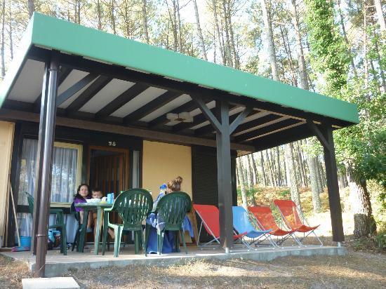Residence-Club Odalys Les Villages sous les Pins: vue de notre bungalow