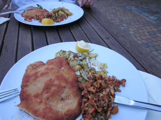 Landgasthof Rieben: Ein frisch zubereitetes Schnitzel mit frischen Pfifferlingen