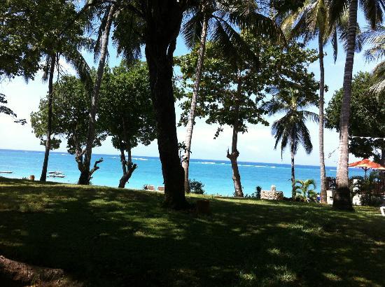 Baobab Beach Resort & Spa: view