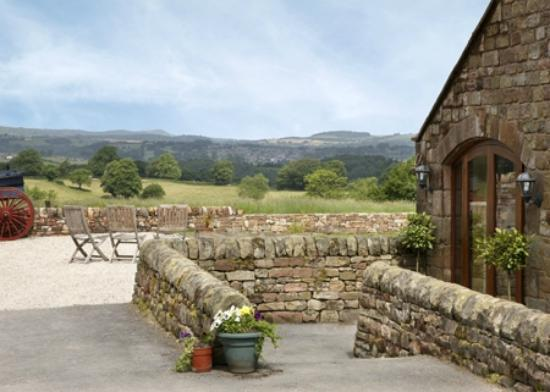 Ringehay Farm Holiday Cottages: Views from the cottages