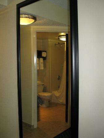 Hampton Inn Princeton : mirror view of bathroom