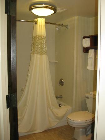 Hampton Inn Princeton : bathroom