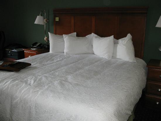 Hampton Inn Princeton : king size bed