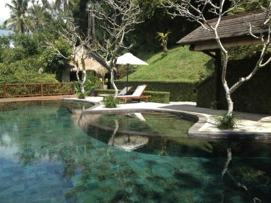 Nandini Jungle Resort & Spa Ubud: Pool side