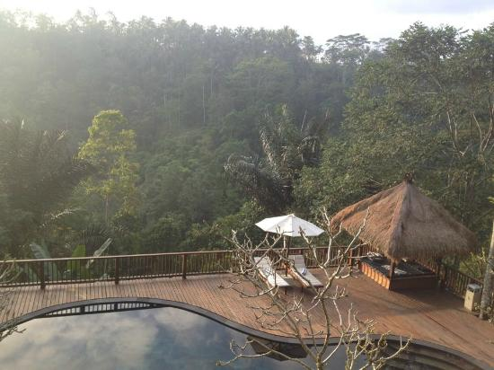Nandini Bali Jungle Resort & Spa: Pool side