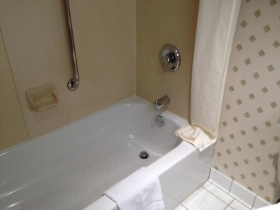 Hampton Inn NY - JFK: bathtub
