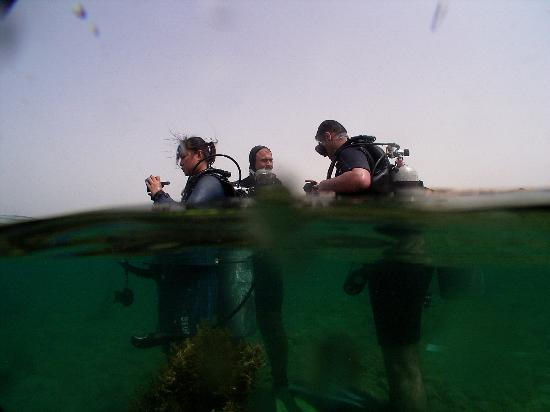 Arab Divers: during course 4