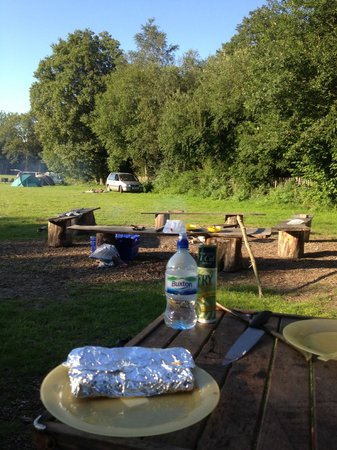 Wowo Campsite: Upper Moat Field at Waspbourne Manor