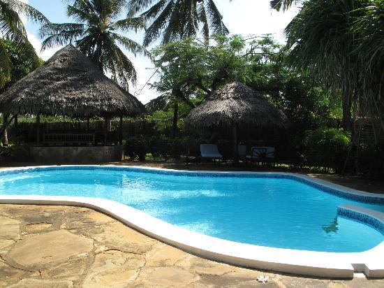 B&B Mela's: piscina
