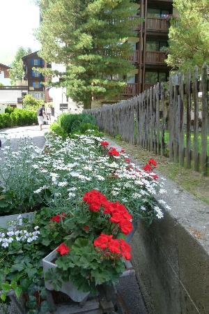 Jolimont Ferienwohnungen: front walkway
