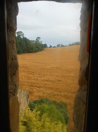 Browson Bank B & B: View from the bathroom, early morning 30/8/2012