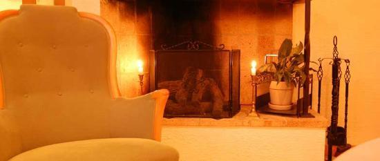 Danderyds Gasteri: Fireplace