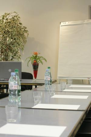 Inter Hotel Arion : Salle séminaire