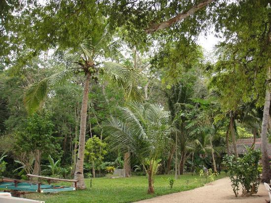 Antoremba - Lodge: il giardino tropicale