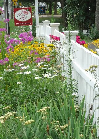 Lily House B&B: Garden