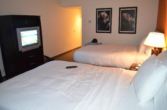 Oakland Airport Executive Hotel: Room