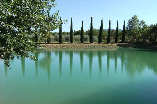 Agriturismo La Sovana: Fishing pond