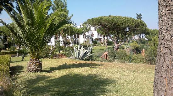 Alfagar Aldeamento Turistico: Apt. village grounds