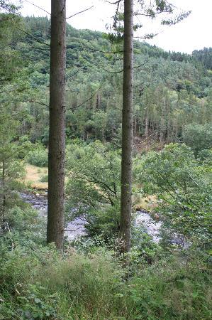Hafod Uchtryd: Hafod - Lady's trail 2