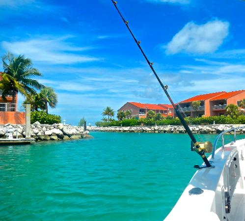 Bimini Sands Resort and Marina : Inside the marina